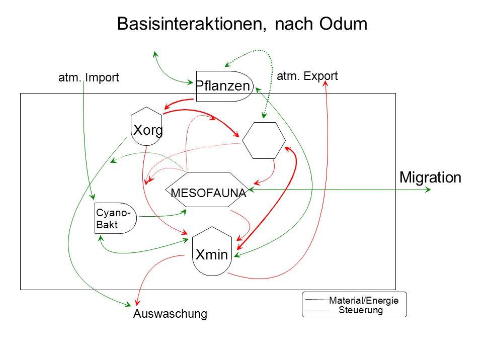 Basisinteraktionen, nach Odum