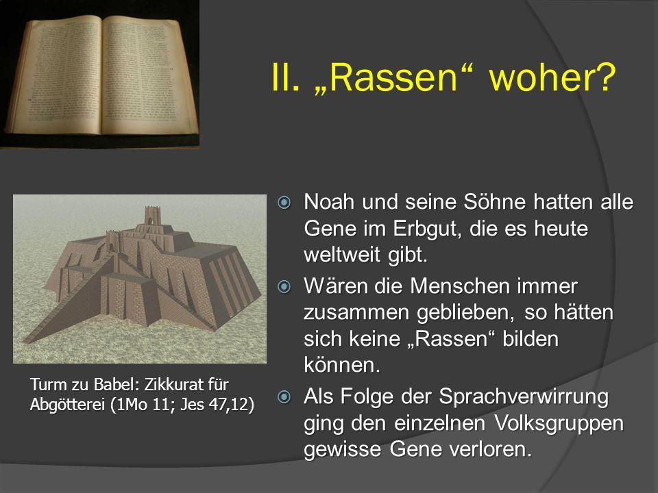 """II. """"Rassen woher Noah und seine Söhne hatten alle Gene im Erbgut, die es heute weltweit gibt."""