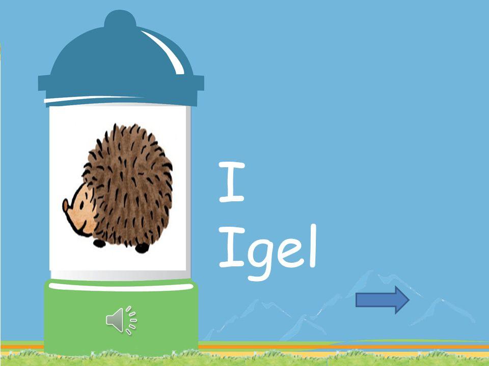 I Igel