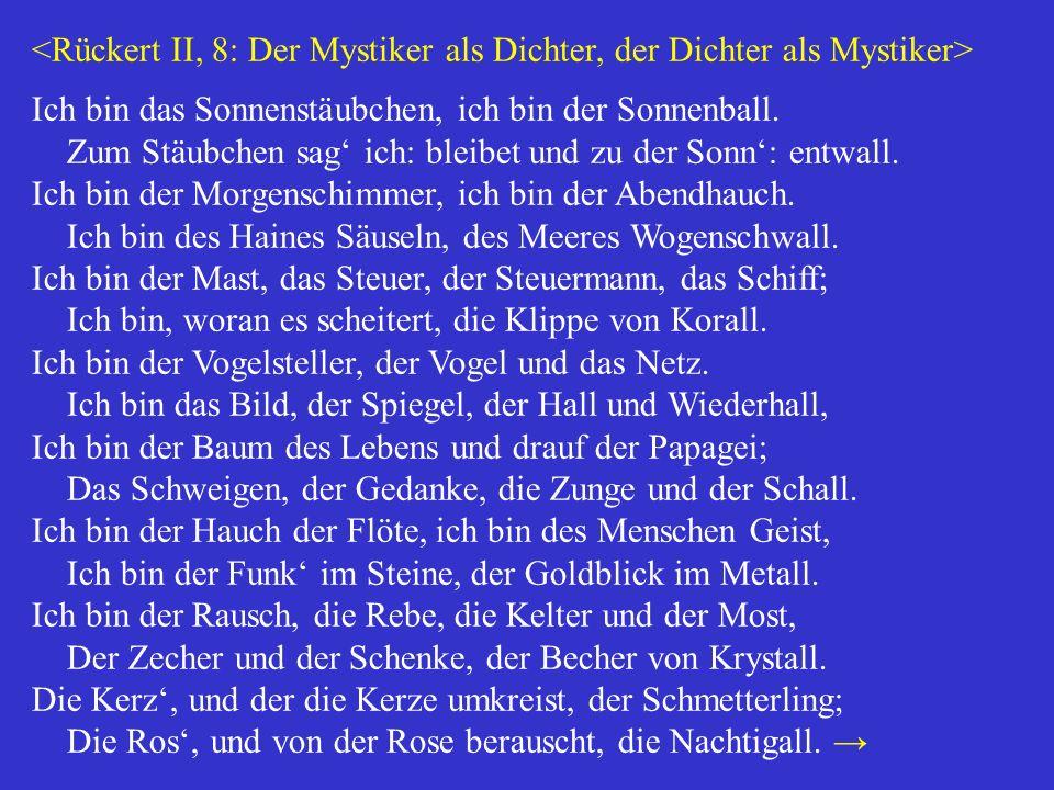 <Rückert II, 8: Der Mystiker als Dichter, der Dichter als Mystiker>