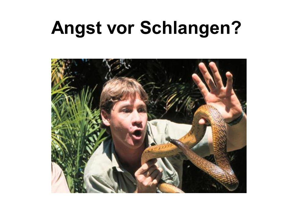 Angst vor Schlangen