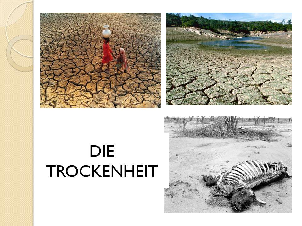 DIE TROCKENHEIT