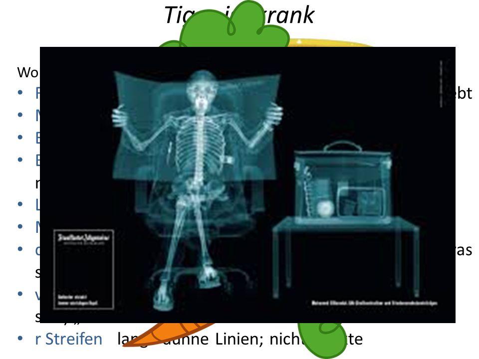 Tiger ist krank Janosch