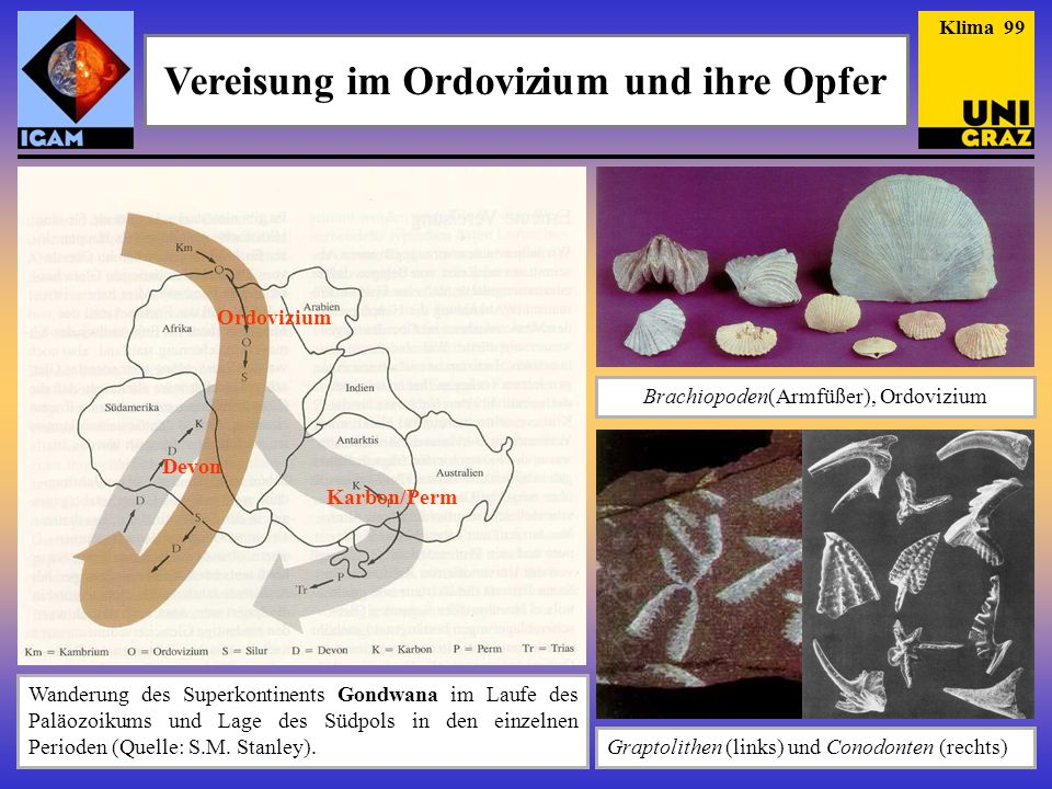 Vereisung im Ordovizium und ihre Opfer