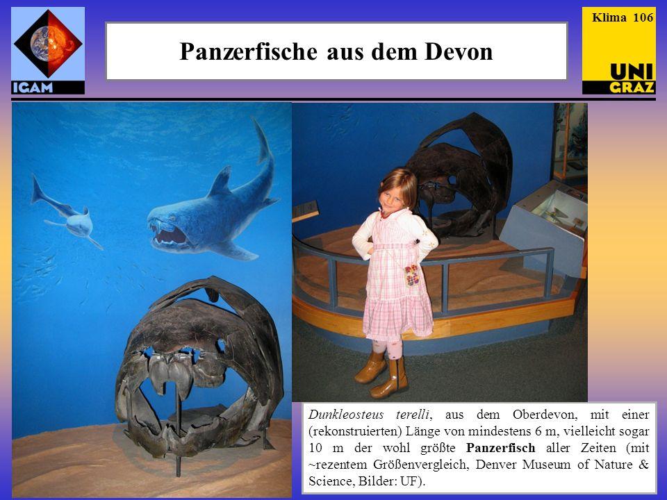 Panzerfische aus dem Devon