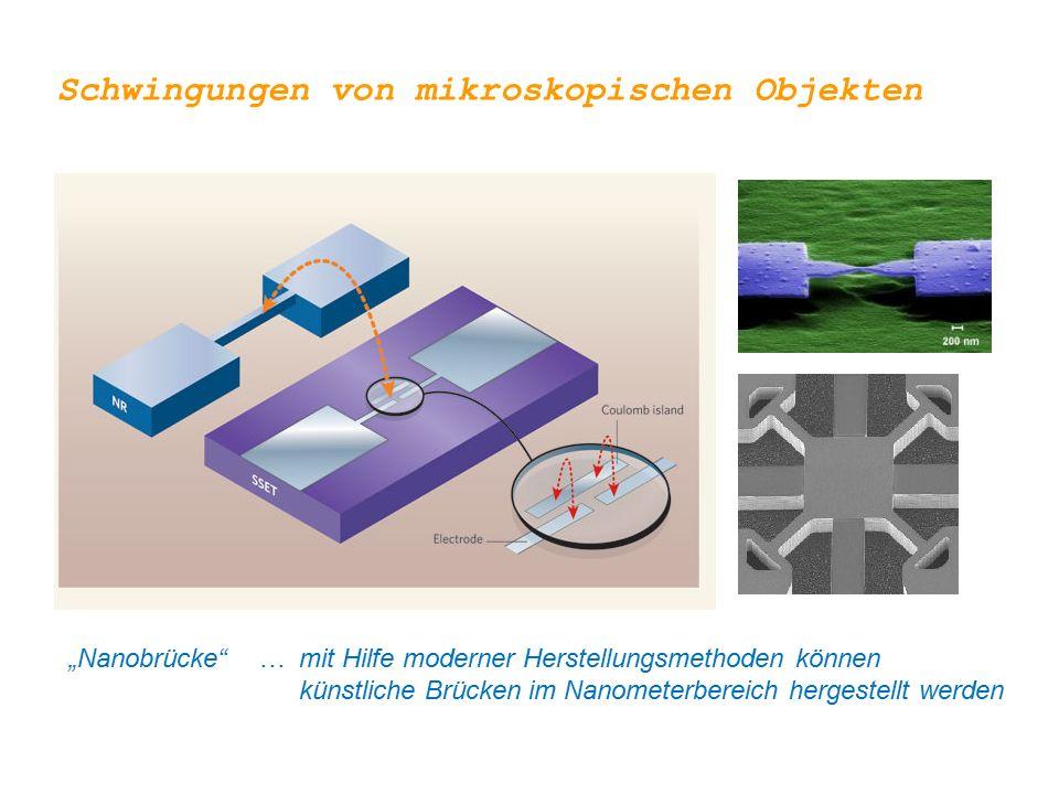 Schwingungen von mikroskopischen Objekten