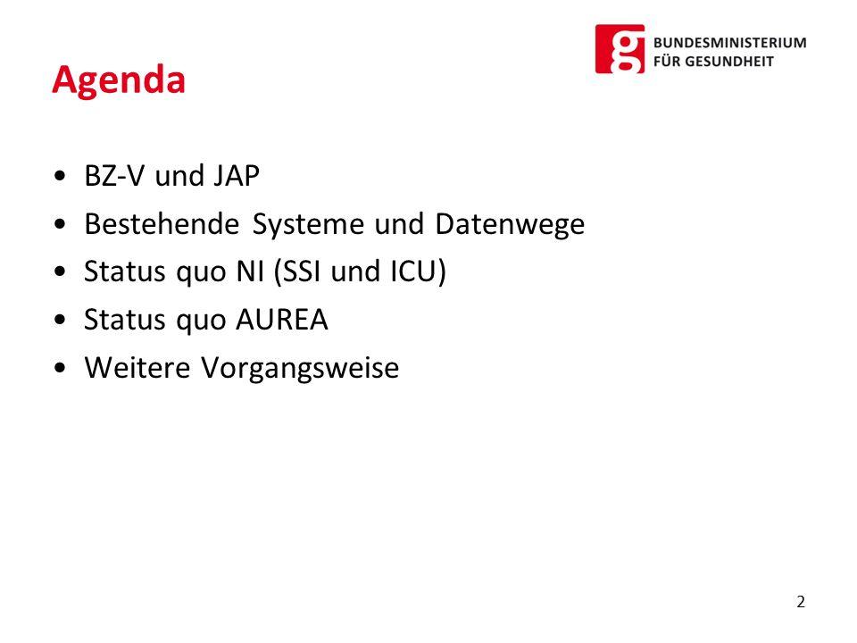 Agenda BZ-V und JAP Bestehende Systeme und Datenwege