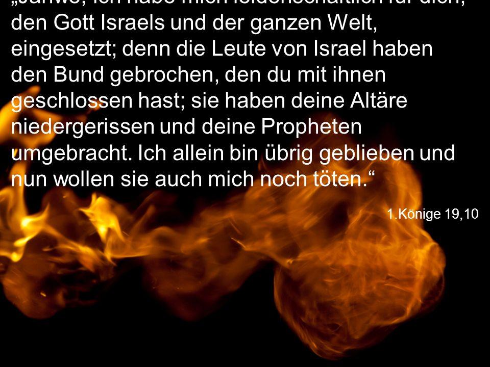 """""""Jahwe, ich habe mich leidenschaftlich für dich, den Gott Israels und der ganzen Welt, eingesetzt; denn die Leute von Israel haben den Bund gebrochen, den du mit ihnen geschlossen hast; sie haben deine Altäre niedergerissen und deine Propheten umgebracht. Ich allein bin übrig geblieben und nun wollen sie auch mich noch töten."""
