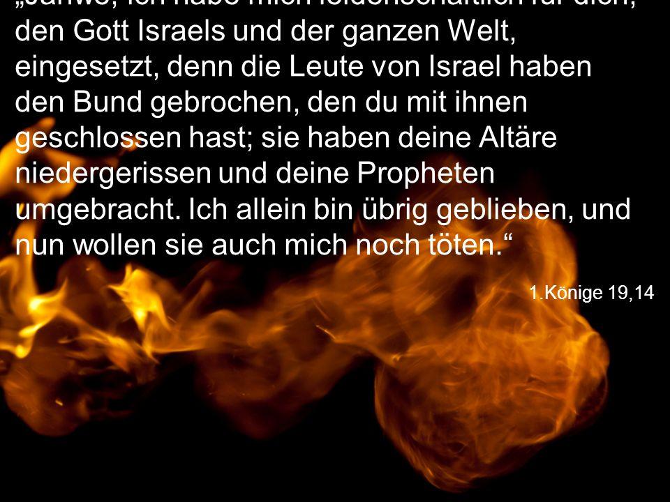 """""""Jahwe, ich habe mich leidenschaftlich für dich, den Gott Israels und der ganzen Welt, eingesetzt, denn die Leute von Israel haben den Bund gebrochen, den du mit ihnen geschlossen hast; sie haben deine Altäre niedergerissen und deine Propheten umgebracht. Ich allein bin übrig geblieben, und nun wollen sie auch mich noch töten."""