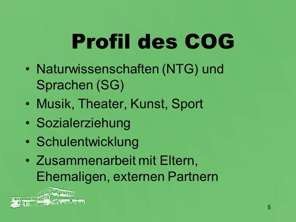 Profil des COG Naturwissenschaften (NTG) und Sprachen (SG)