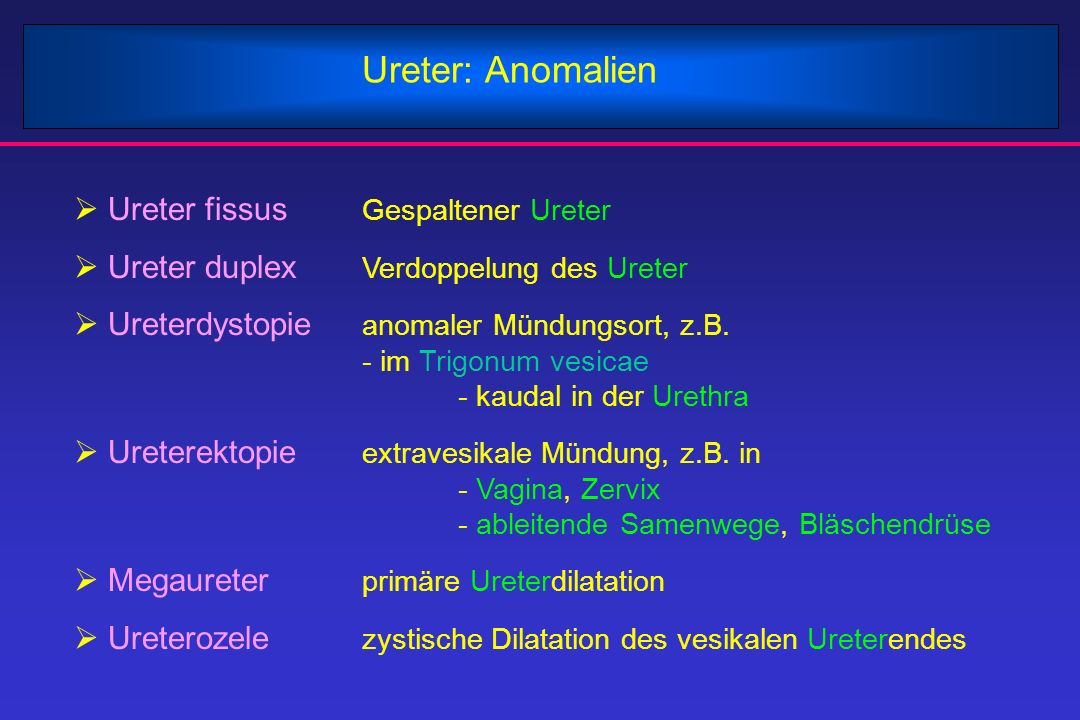 Ureter: Anomalien Ureter fissus Gespaltener Ureter