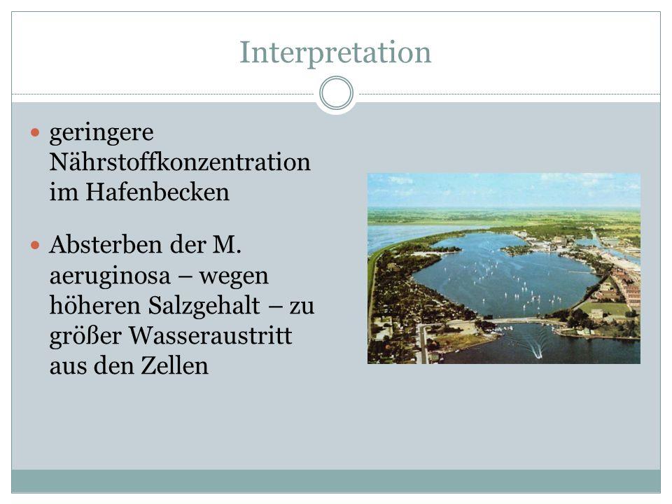 Interpretation geringere Nährstoffkonzentration im Hafenbecken