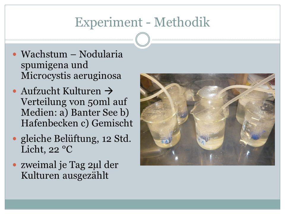Experiment - Methodik Wachstum – Nodularia spumigena und Microcystis aeruginosa.