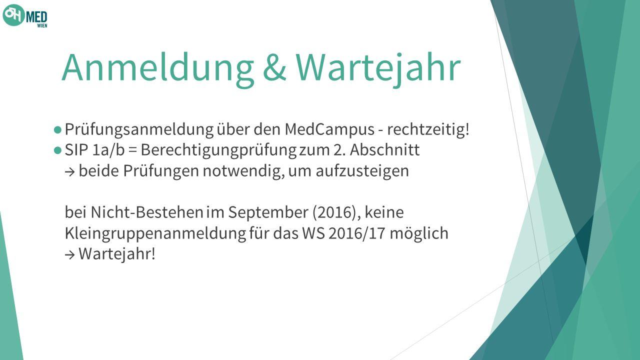 Anmeldung & Wartejahr Prüfungsanmeldung über den MedCampus - rechtzeitig!