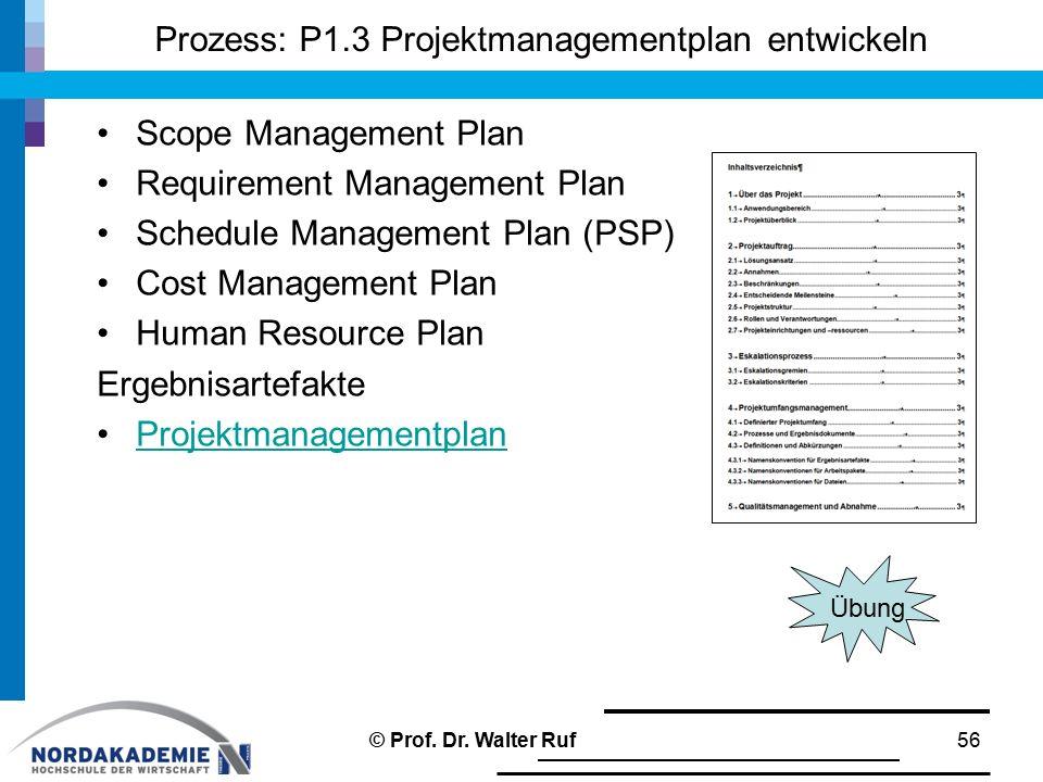 Prozess: P1.3 Projektmanagementplan entwickeln