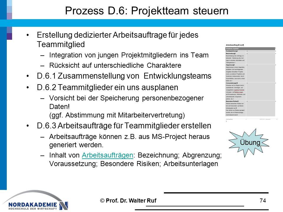 Prozess D.6: Projektteam steuern