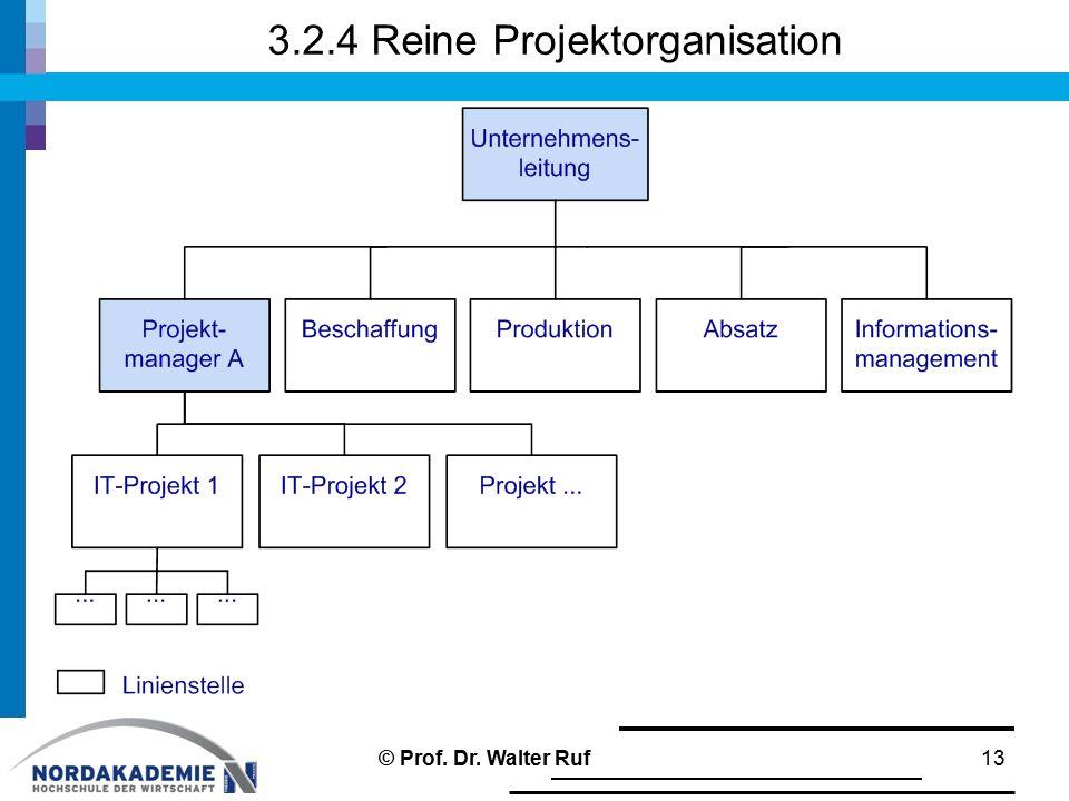 3.2.4 Reine Projektorganisation