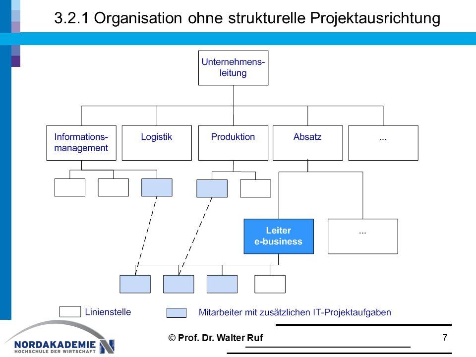3.2.1 Organisation ohne strukturelle Projektausrichtung