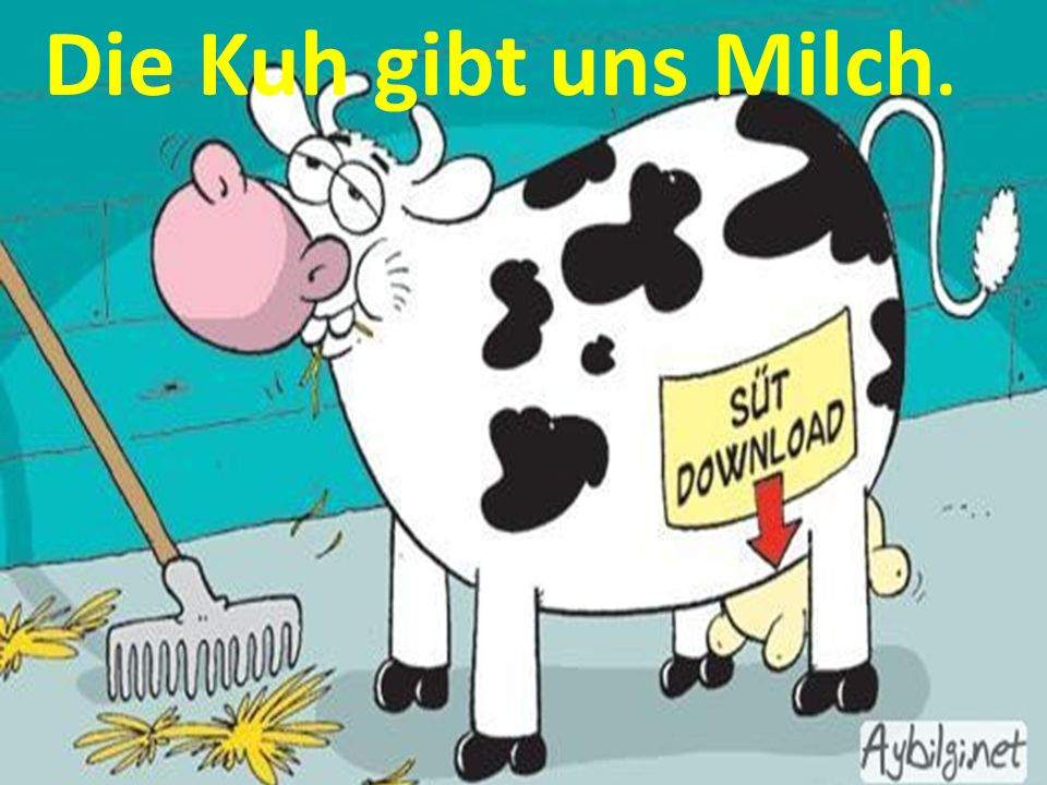 Die Kuh gibt uns Milch.