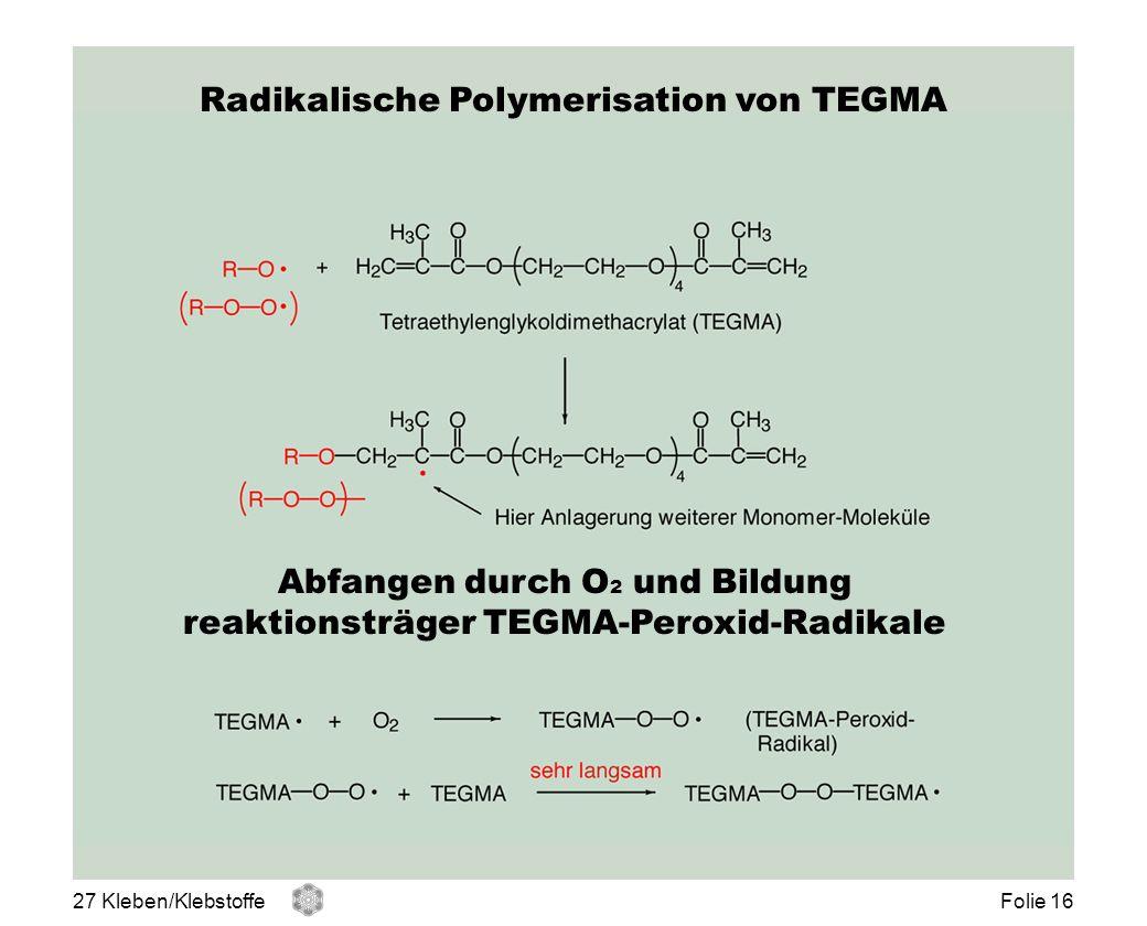 Radikalische Polymerisation von TEGMA