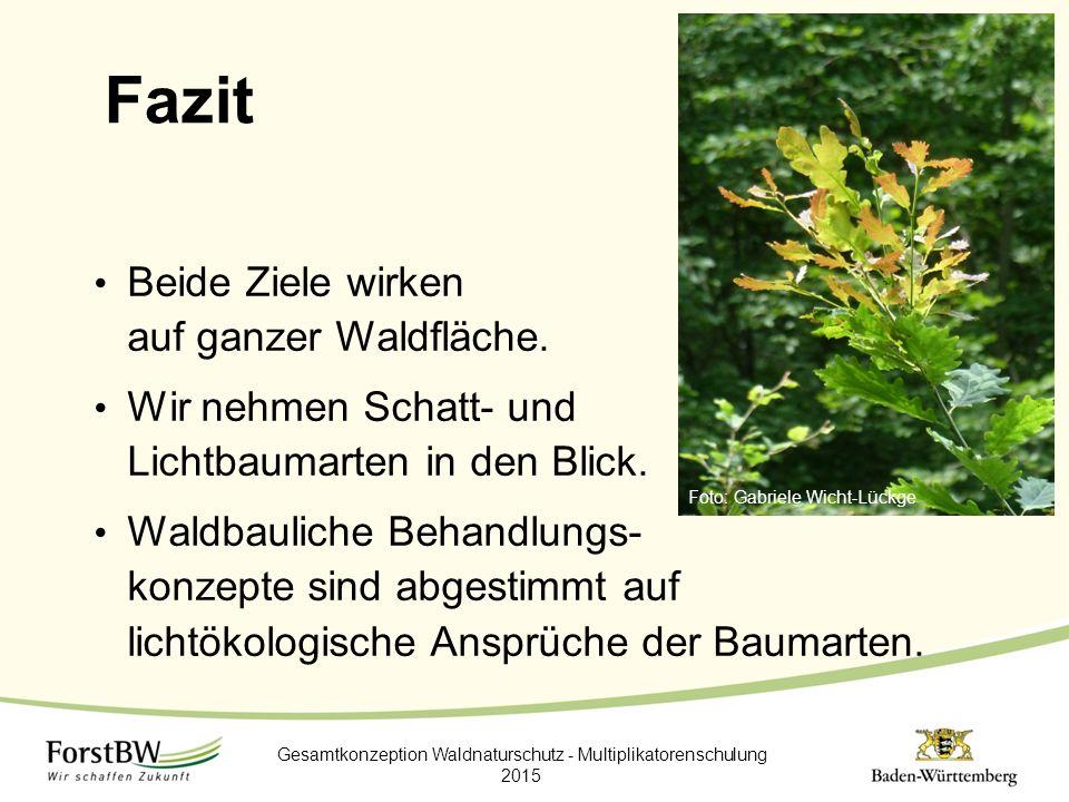 Gesamtkonzeption Waldnaturschutz - Multiplikatorenschulung 2015