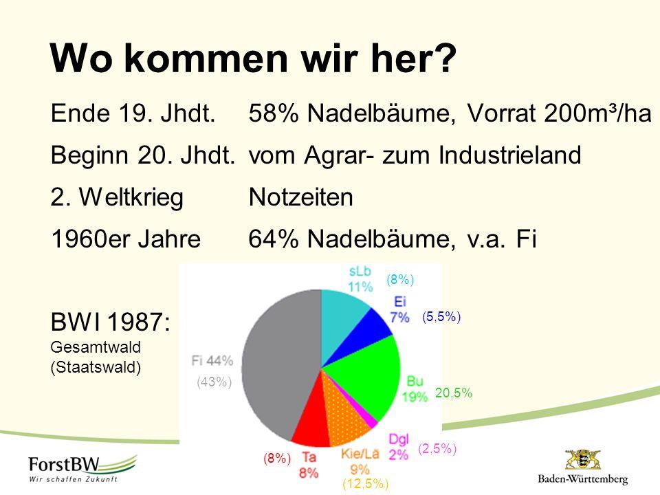 Wo kommen wir her Ende 19. Jhdt. 58% Nadelbäume, Vorrat 200m³/ha