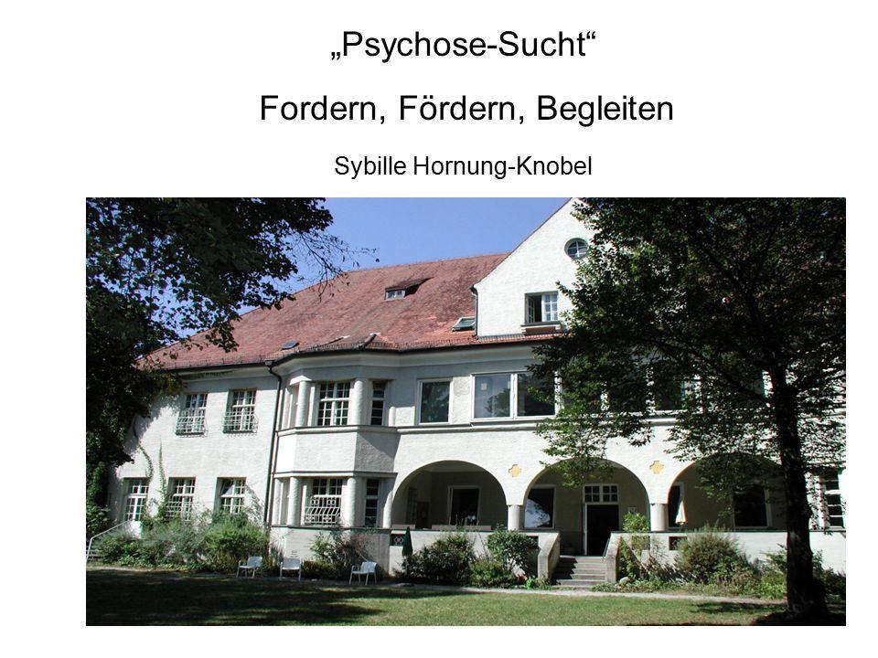 """""""Psychose-Sucht Fordern, Fördern, Begleiten Sybille Hornung-Knobel"""