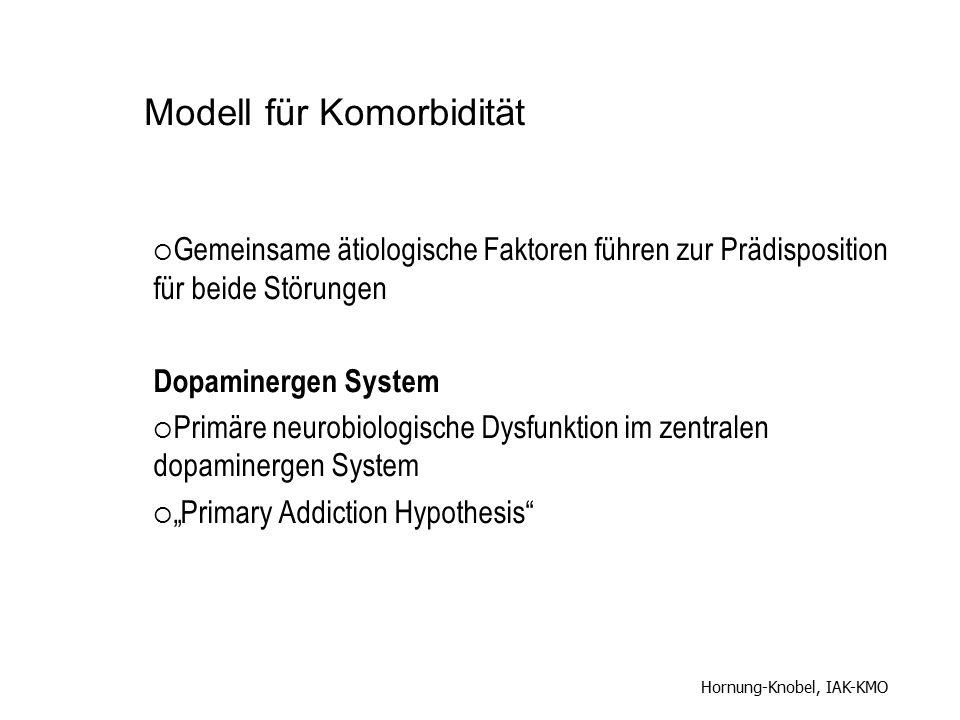 Modell für Komorbidität