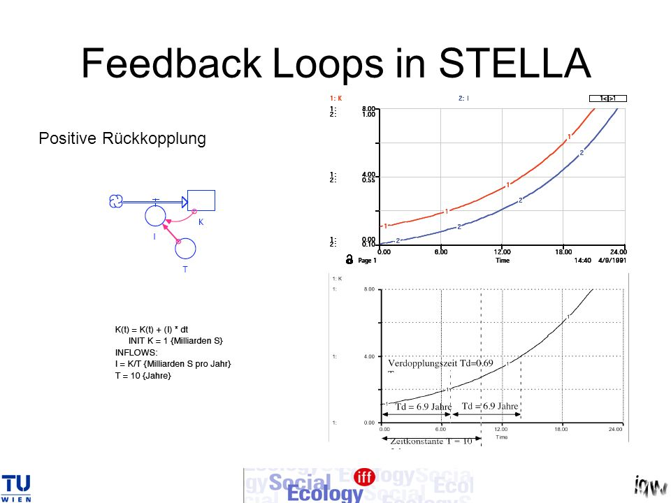 Feedback Loops in STELLA