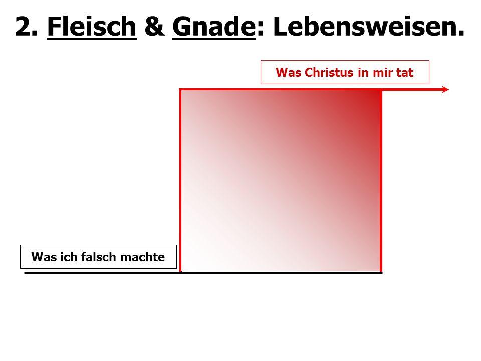 2. Fleisch & Gnade: Lebensweisen.