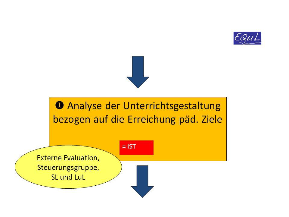Externe Evaluation, Steuerungsgruppe, SL und LuL