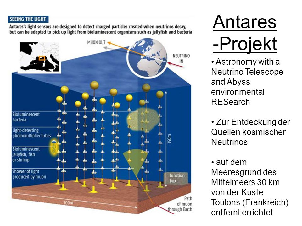 Antares -Projekt Astronomy with a Neutrino Telescope and Abyss environmental RESearch. Zur Entdeckung der Quellen kosmischer Neutrinos.
