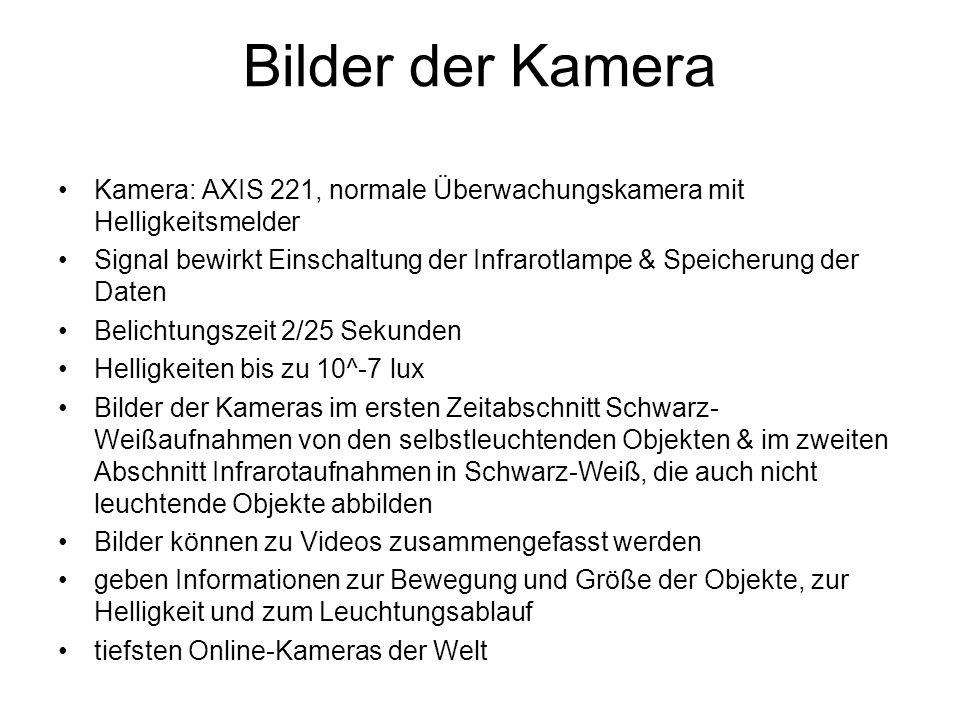 Bilder der Kamera Kamera: AXIS 221, normale Überwachungskamera mit Helligkeitsmelder.