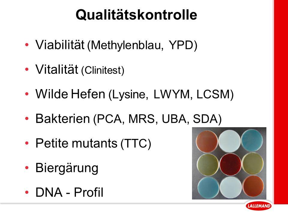 Qualitätskontrolle Viabilität (Methylenblau, YPD)