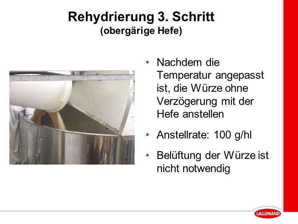 Rehydrierung 3. Schritt (obergärige Hefe)