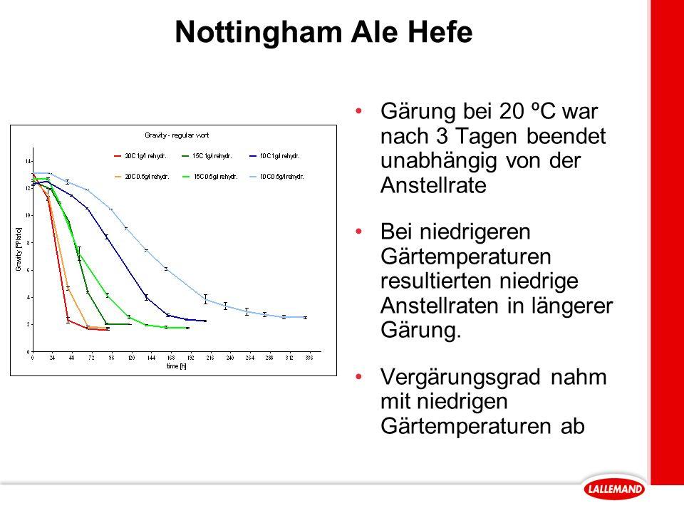Nottingham Ale Hefe Gärung bei 20 ºC war nach 3 Tagen beendet unabhängig von der Anstellrate.