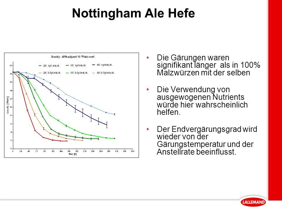 Nottingham Ale Hefe Die Gärungen waren signifikant länger als in 100% Malzwürzen mit der selben.