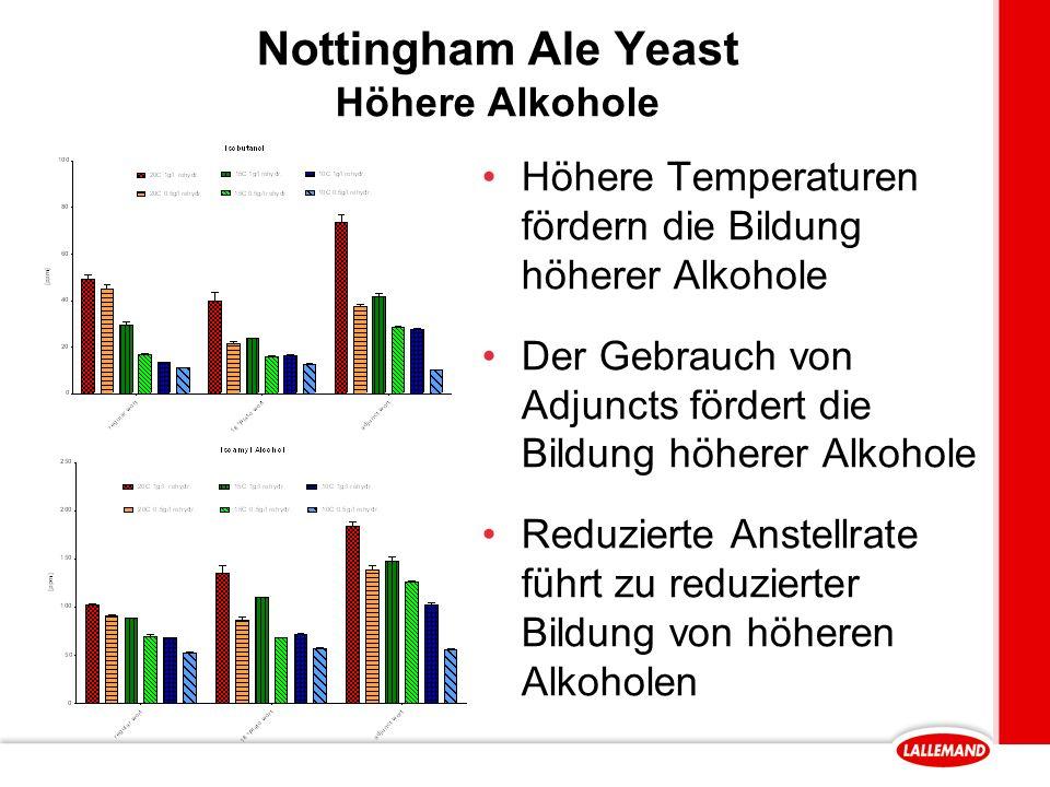 Nottingham Ale Yeast Höhere Alkohole