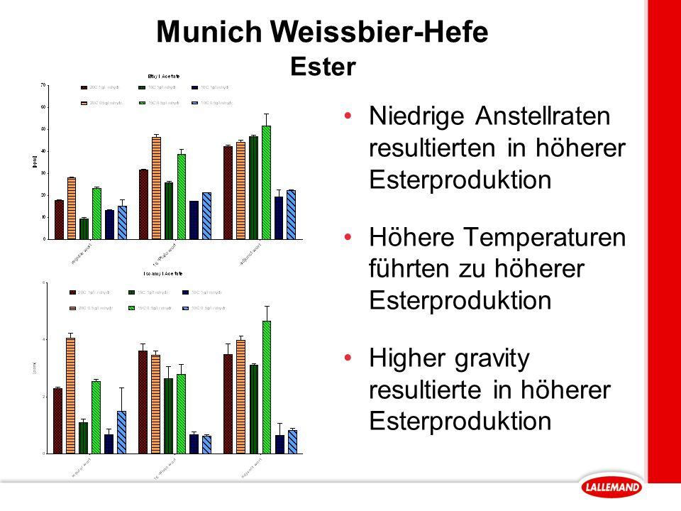 Munich Weissbier-Hefe Ester