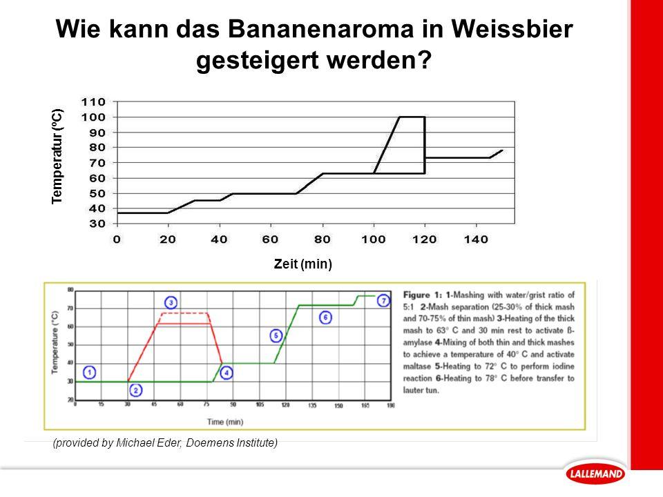 Wie kann das Bananenaroma in Weissbier gesteigert werden