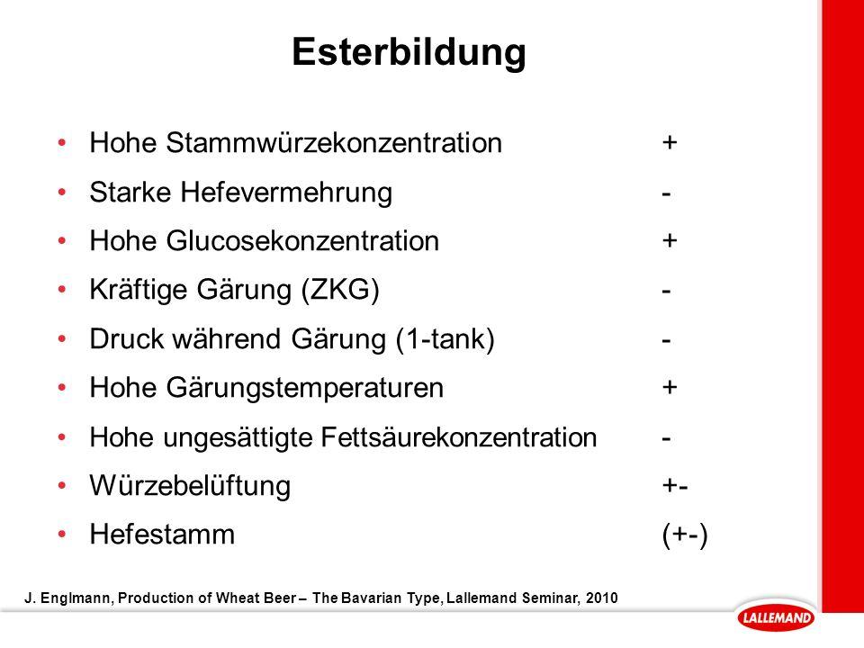 Esterbildung Hohe Stammwürzekonzentration + Starke Hefevermehrung -