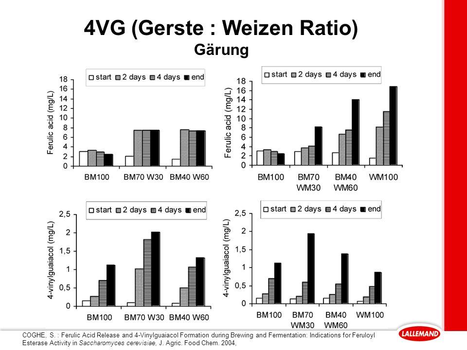 4VG (Gerste : Weizen Ratio) Gärung