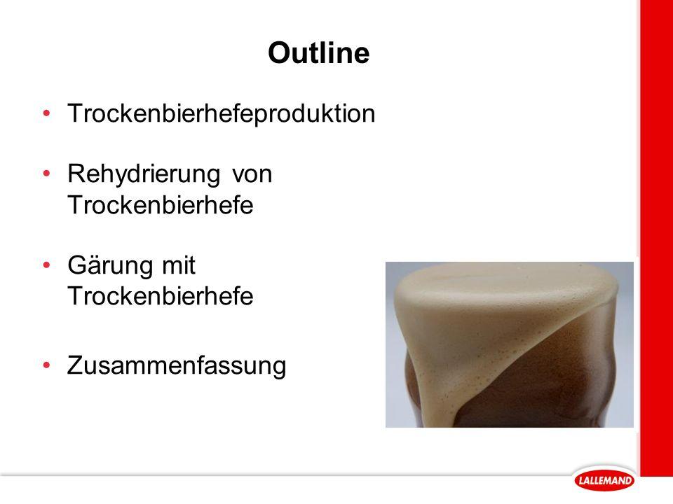 Outline Trockenbierhefeproduktion Rehydrierung von Trockenbierhefe