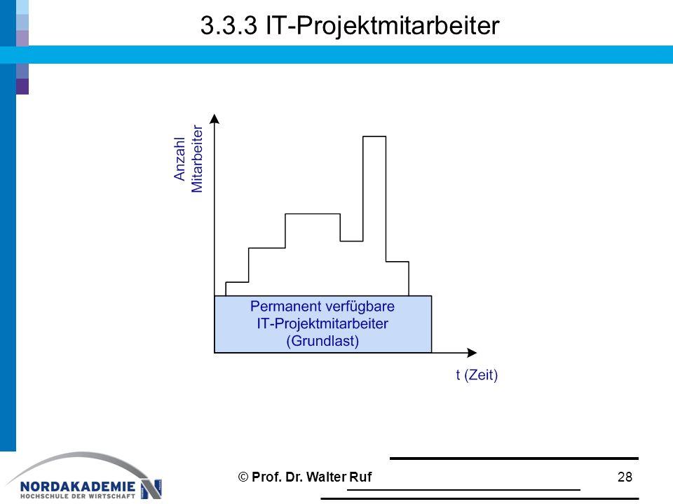 3.3.3 IT-Projektmitarbeiter