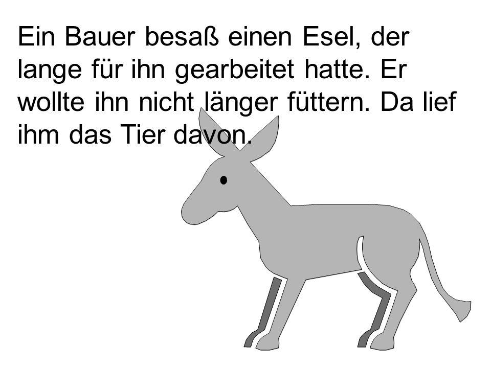 Ein Bauer besaß einen Esel, der lange für ihn gearbeitet hatte. Er