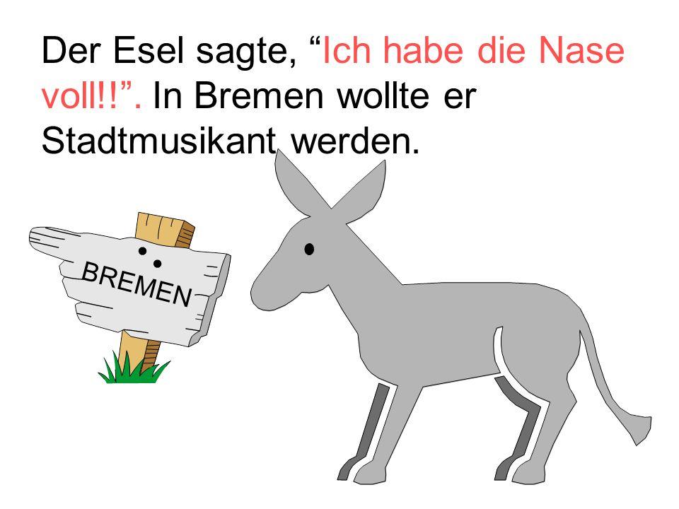 Der Esel sagte, Ich habe die Nase voll!! . In Bremen wollte er