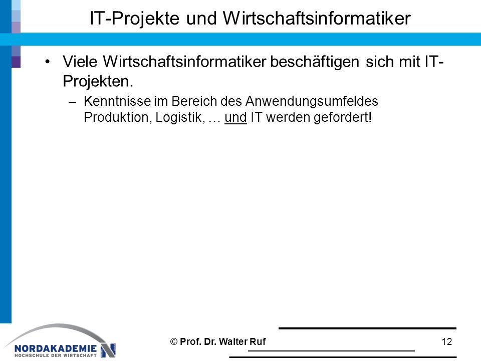 IT-Projekte und Wirtschaftsinformatiker