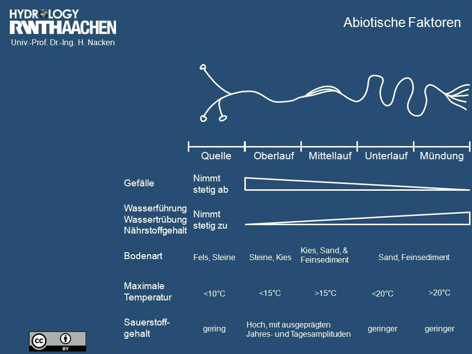 Abiotische Faktoren Quelle Oberlauf Mittellauf Unterlauf Mündung