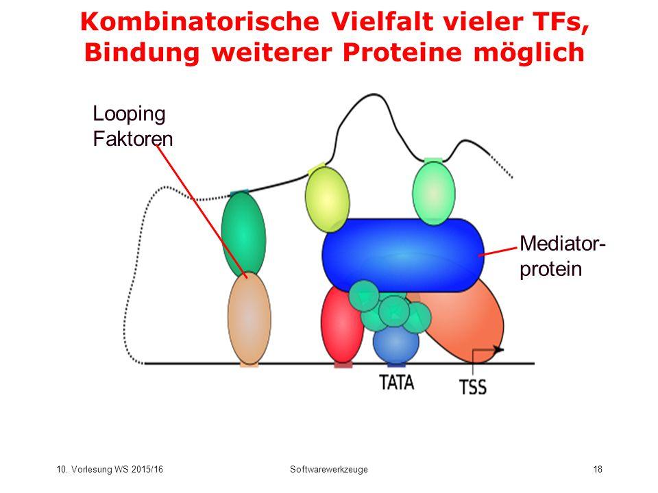 Kombinatorische Vielfalt vieler TFs, Bindung weiterer Proteine möglich