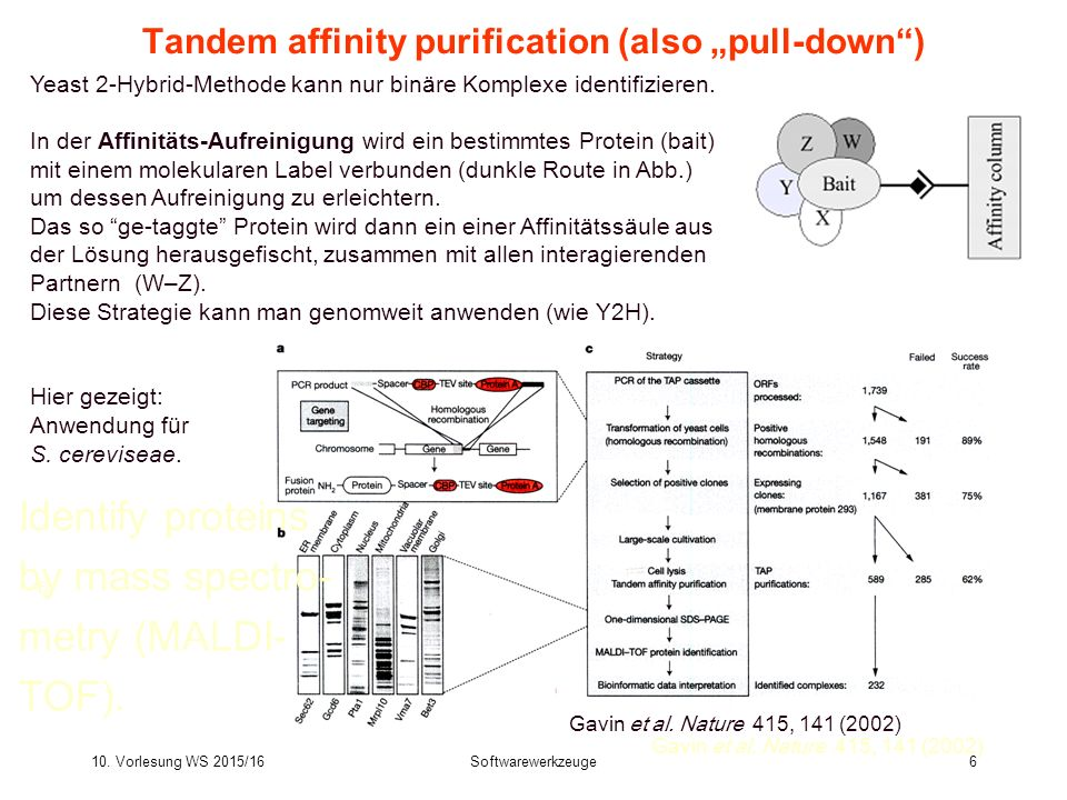 "Tandem affinity purification (also ""pull-down )"